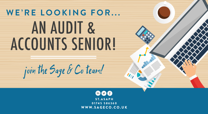 sage-audit-accounts-job-blog